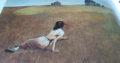 Art print – World of Christina – by Wyeth