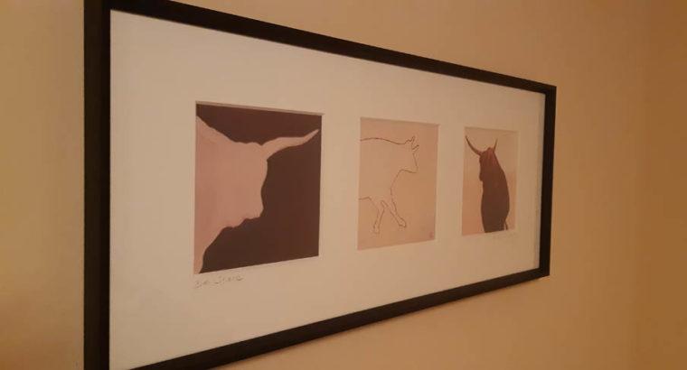 Drawings of bulls