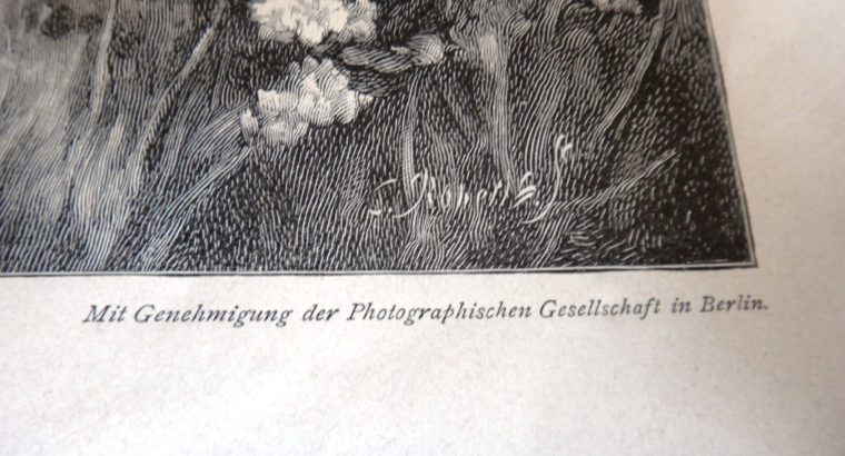 """Photo print """"junges Leben""""  Young life"""