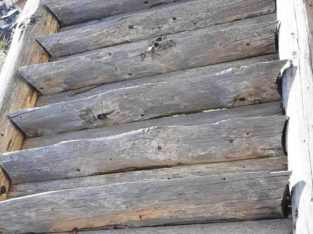 Prehistoric wooden stairs