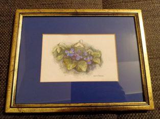 """Drawing: """"Veilchenstock"""" violet flower"""